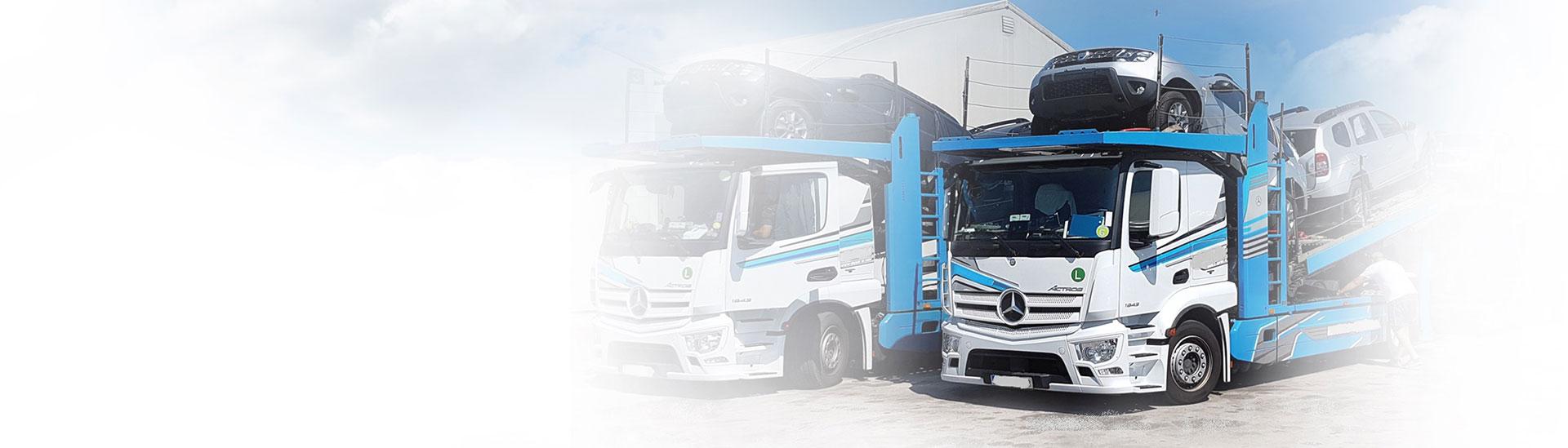 Vehicle transport